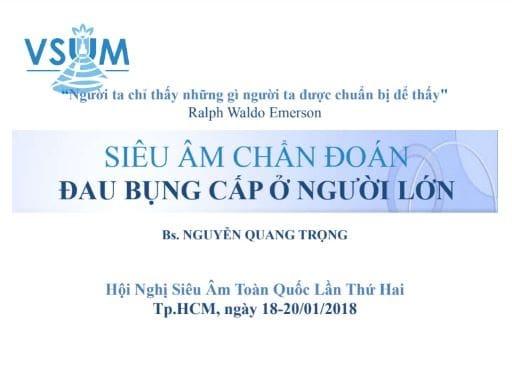 Siêu Âm Chẩn Đoán Đau Bụng Cấp Ở Người Lớn – BS. Nguyễn Quang Trọng